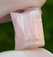 Natural Pink Tourmaline Crystal from Afghanistan, Collector specimen, US Seller