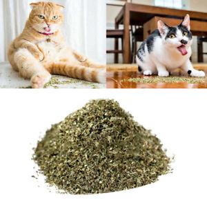 Catnip Dried WOW Fresh High Quality (Plus 1 Free Bag) Filled Fresh Everyday