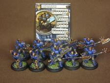 30mm Warmachine KPW painted Cygnar Units Stormguard