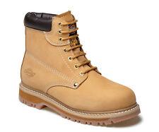 Dickies Diccleve10h Cleveland miel seguridad estupenda Boots UK 10 euros 44