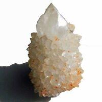 Citrine and White Spirit Quartz  Sunshine  Cactus Crystal  cc1887