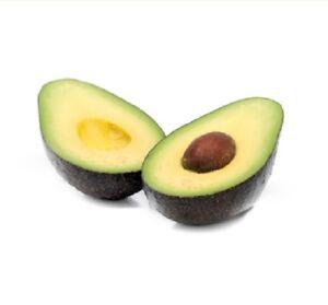 Avocat Naturel 100% Pure Huile 100ml 500ml 1L Support de massage de base