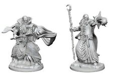 D&D Nolzur's Marvelous Miniatures Human Male Wizard (2)