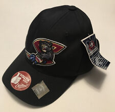 Minor League Baseball Sacramento River Cats Hat / Cap Youth Kids New with Tags