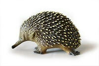NEW Science & Nature Australian Native Echidna Model 10cm