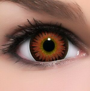 """BigEyes Circle Lenses Rot """"Bambi Red"""" Kontaktlinsen + GRATIS Behälter"""