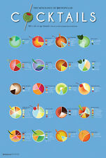COCKTAILS - MIXOLOGY POSTER - 24x36 BAR ALCOHOL DRINKING LIST CHART 10605