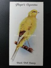 No.10 DUTCH FRILL CANARY - Aviary and Cage Birds by John Player 1933