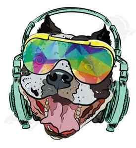 cool dog headphone glasses iron on t shirt transfer A5