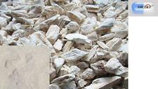 100g largo Gu (Ossa Draconis) drgonsbones Drgon de hueso, fossilizid