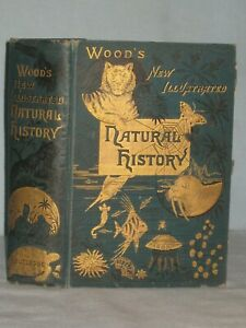 1800'S BOOK THE NEW ILLUSTRATED NATURAL HISTORY BY J.G. WOOD