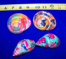 4 HERMIT CRAB SHELLS PAINTED DESIGN DISPLAY DECOR FISH TANK ITEM # PHC11-4