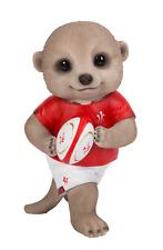 Vivid Arts - PET PALS BABY MEERKAT - Rugby Player