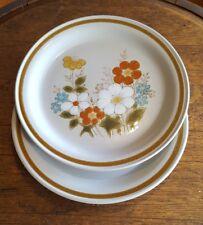 2 Vintage Highland Florals Highland Blue Dinner plates Stoneware