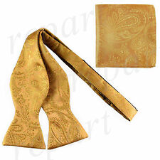 New men's self tie free style bowtie set paisley polyester formal wedding Gold