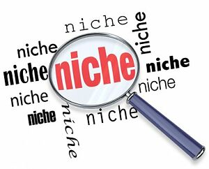 100 Niche related blog comments! Best Offer on eBay!