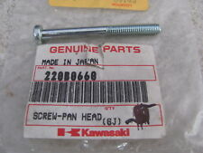 NOS OEM Kawasaki Pan Head Screw 6X60 1968-88 Bushmaster KLT200 ATV 220B0660