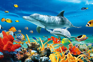 DOLPHIN PAIR AND MARINE LIFE - 3D DOLPHIN PICTURE 400mm X 300mm (NEW)