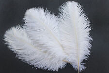 """FEATHERS 5 pcs WHITE Ostrich Feathers Millinery and Crafts  5"""" x 7"""""""