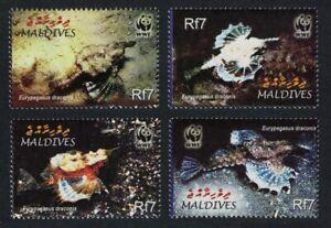 Maldives WWF Dragonfish Fish 4v 2004 MNH SG#3966-3969 MI#4407-4410 SC#2839 a-d