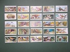 original cigarette cards by Player's - Birds and their young
