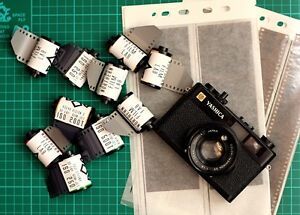 5 x Kodak Vision3 50D fresh stock 35mm film cine movie still colour