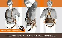 PPG, Paramotor, Paragliding, kiting, ground handling training suitable harness