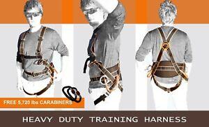 Paragliding, Paramotor, Paraglider, kiting ground handling harness w/Carabiners