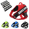 Pet Service Dog No Pull Harness Reflective Vest Puppy Walk Out Collar & Handle