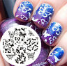 BORN PRETTY Nail Art Stamping Plate Various Butterfly Image Stamp Template BP-74