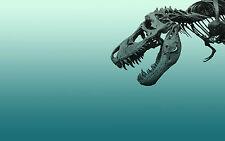 Framed Print - Skeleton T-Rex Dinosaur (Picture Poster Animal Fossil Art Raptor)