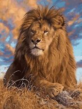 Paint By Numbers - DIY acrylic Painting Picture Art - Lion