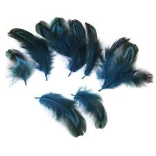 50pcs Pheasant Feathers DIY Craft Mask Hat Decor Multi-Purpose Craft Supplie