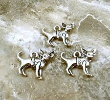 3 Pewter Chihuahua Charms - 5496