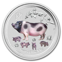 2019 ~ 1/4~OZ. .9999 SILVER ~ LUNAR  YEAR of the PIG ~ PERTH MINT ~COLOR~ $15.88