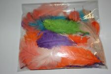 Craft ostrich feather pack mixed colours 12-15cm 1st and 2nd grade