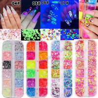 12 Grids Nail Art Flakes Holographicss Nail Glitter Sequins Decor Butterfly Tips