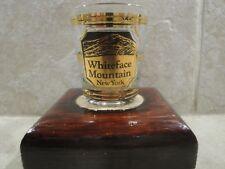 CULVER WHITEFACE MOUNTAIN NEW YORK 22 KARAT GOLD TRIMMED SHOT GLASS