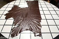 'Brownie Batter' leather hide. Small crackle finish. Appx 33 sqft. R14W8-5