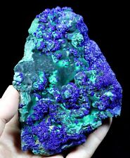 625g Sparkling Blue Azurite on botryoidal Green Malachite Anhui China CM631200