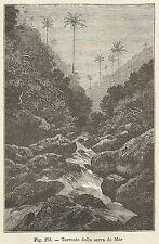 A2030 Torrente della serra do Mar - Xilografia - Stampa Antica 1895 - Engraving