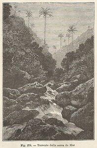 A2030 Stream Of Serra Do Mar - Xylograph - Print Antique 1895 - Engraving