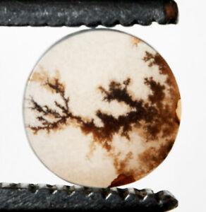 9.40*9.40 mm Top Quality Dendritic Agate Unique Piece Shazar Round Cut Gemstone