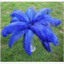 Wholesale Blue ostrich feathers 100pcs 8-10inch/20-25cm FIT decoration #8