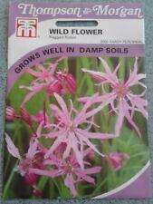 ragged robin. wild flower seeds. Thompson and morgan. fresh stock.