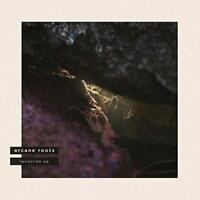 """Arcane Roots - Landslide (NEW 12"""" VINYL EP)"""