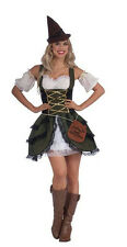Robyn the Rich Sexy Bandit Robin Hood Female Adult Costume