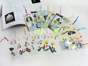 6/12/24/48PCS Nature Butterfly Wings & Plant Specimen Film Bookmarks Bookmarkers