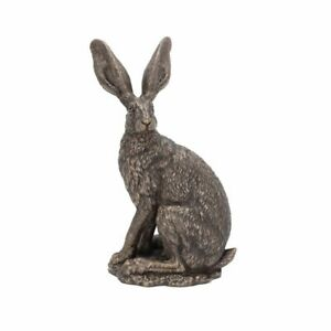 Beautiful Bronzed Hare - SIT TGHT Country Side Nature Wild Life Farm  VP003