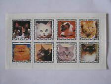 Katzen Guinea 1 Block